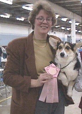 Disquise Best Junior Puppy At The Palmetto Pembroke Welsh Corgi Club